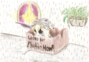 Derpy Hooves Looks for Muffin Home by VickyCupcake