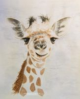 Giraffe by DominikaAniola