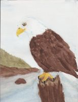 The Mighty Eagle by Stargazer96