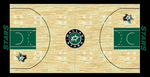 Dallas Stars Custom Court by S231995