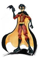 TIM DRAKE is ROBIN by RyanMcMurry