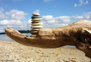 driftwood hand-stone balance by tamas kanya by tom-tom1969