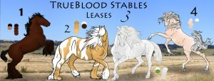 TrueBlood Horse Lease by carlmoon