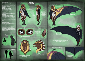 Shorty's reference sheet by shorty-antics-27