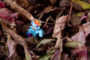 My little pony: Pegasus nest by Uligma