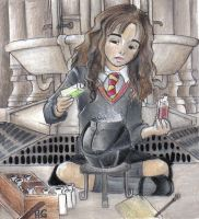 Polyjuice potion by KittyNamedAlly
