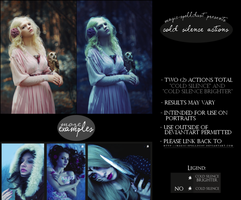 Cold Silence Portrait Photoshop Actions by magic-spelldust