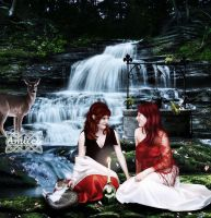 Under the wishing well by Amliel