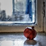Pomegranate Still Life by Orzz