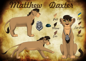 Commission - Matthew Daxter reference by Leeloo250