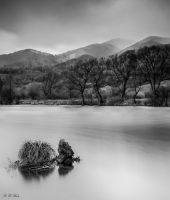 Lake by dinco1