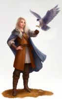 Falconer by LKivihall