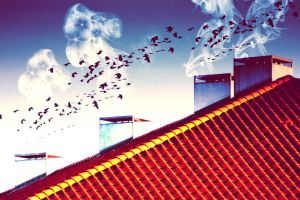 birds go flying at the speed of sound by sweet-reality-xo