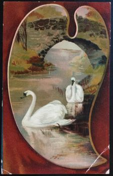 Antique Postcard - Swans Swimming - Bridge by KarRedRoses