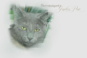 Sovereignty Graphics Page Layout -- Winter 2013 by leafeh22