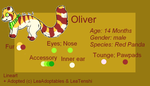 Oliver Reference-Sheet 2014 by BalouTheLover