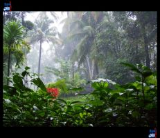 Kerala Monsoon 04 by impeccablez