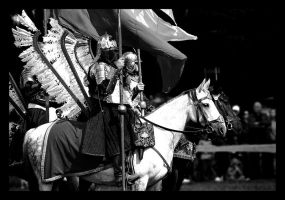 The Polish Hussar by tenczowy