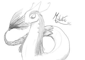 Real Milotic (uncoloured) by Rox-ma-Sox