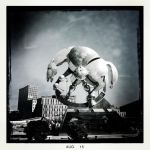 Rolling Horse by vw1956
