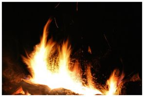Fire Log 04-3 by NOS2002