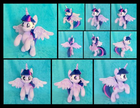 Princess Twilight: Ready for Takeoff! by fireflytwinkletoes