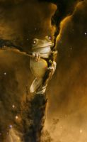 Space Frog by oilcorner