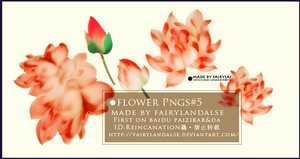 FLOWER PNGS#4 by Fairylandalse