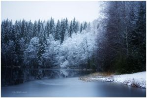 First winter days.. III by closer-to-heaven