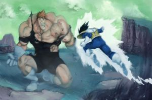 vegeta vs racoom by possedmofo