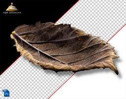 AutumnLeaf 3 by HJR-Designs