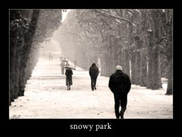 Snowy park by graffit