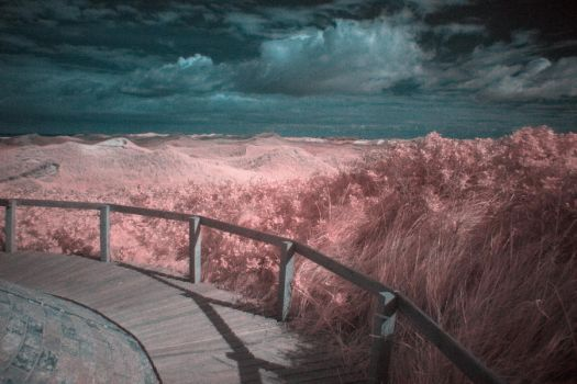 Infrared by Bornhold