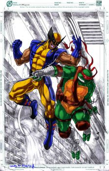 Wolverine Vs. Raphael (Unfinished colors) by jey2dworld