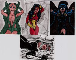 HEROINE SKETCH CARDS by shawncomicart