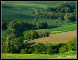 BELVEDERE OSTRENSE (AN) - MY LAND by MarcoLorenzetti