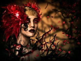 ROSE OF DEATH by Mercedes6