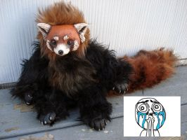 Fizzroy Red Panda doll by missmonster