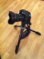 my canon 40d and manfrotto togheter by cavalars