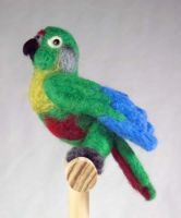 Maroon Belly Conure Plush by The-GoblinQueen