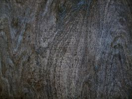 Wood or Concrete? by Baq-Stock