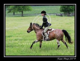 Joy Ride by equusimages