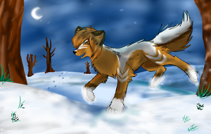 Winter by Aguawolf