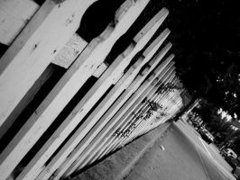 Fence by joshuanieves