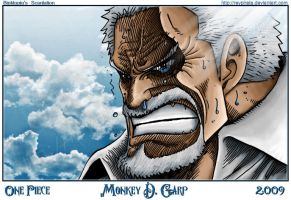 Monkey D. Garp - One Piece by reypirata