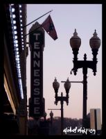 Tennessee Theater by Famous-Panda