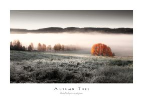 Autumn Tree by Stridsberg