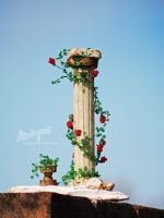 Roses and pieces of History by beads-poet