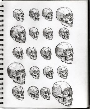 04 Skulls by SeaQuenchal