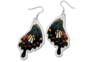 Real Red Helena Butterfly Wing Earrings by TheButterflyBabe